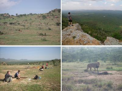 Figure 1 - Mila Sita: The Site (Top Left). The Ranch (Top Right). Digging at Mila sita (Bottom Left). Lions on Site! (Bottom Right). (Image copyright - Khadija McBain: Top Left & Right/Jacqui Mellows: Bottom Left & Right)