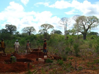 <b>Figure 1.</b> <i>Kisiwa Forests.</i> Excavations were carried out in the surrounding area of Mikindani for my PhD (Image Copyright: M. Pawlowicz).