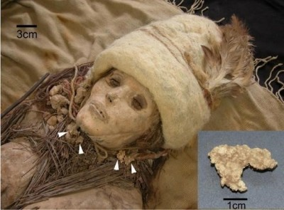 Figure 1.Photograph of a female mummy from tomb M11 (Yang et al.2014, 180)