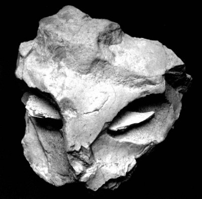 "Figure 2. The proto-figurine ""mask"" (Marquet and Lorblanchet 2003, 664)."